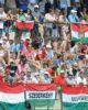 Újabb komoly megbecsülés a magyar kajak-kenunak