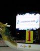 Jégsárkányok lepték el a Városligeti Műjeget