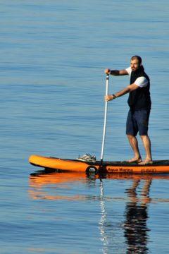 Magyarországon is hódít a hawaii őrület